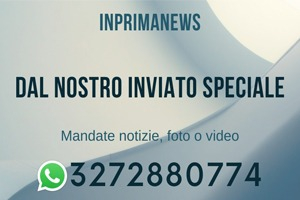 inviato speciale in prima news